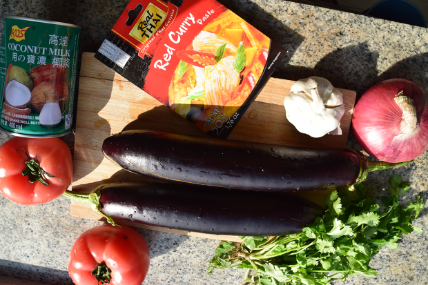 eggplant thai curry5 .png
